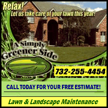 A Simply Greener Side LLC